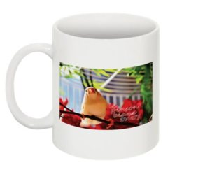 twfa mug1